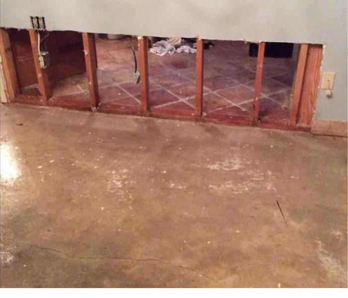 Mold Removal In New Orleans Home After