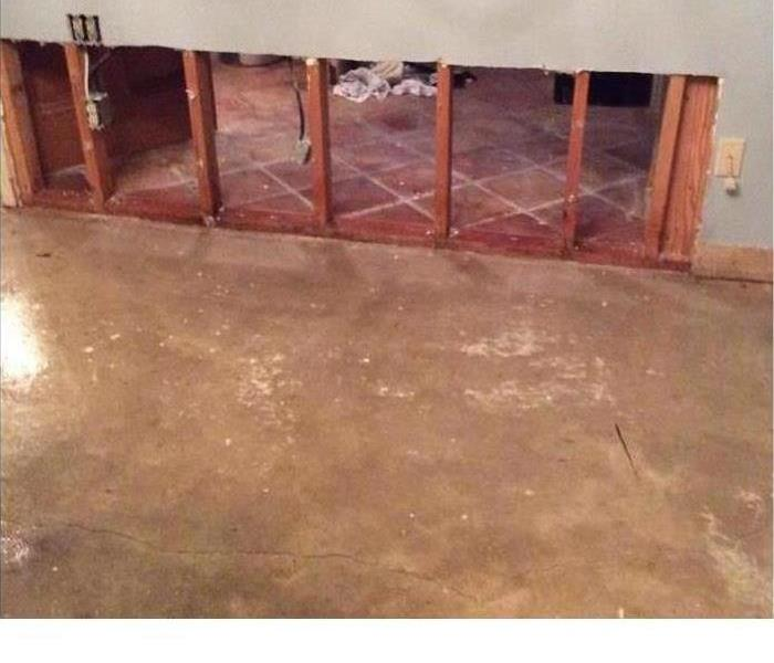 Mold Remediation What Is the Difference Between Mold Removal and Remediation?