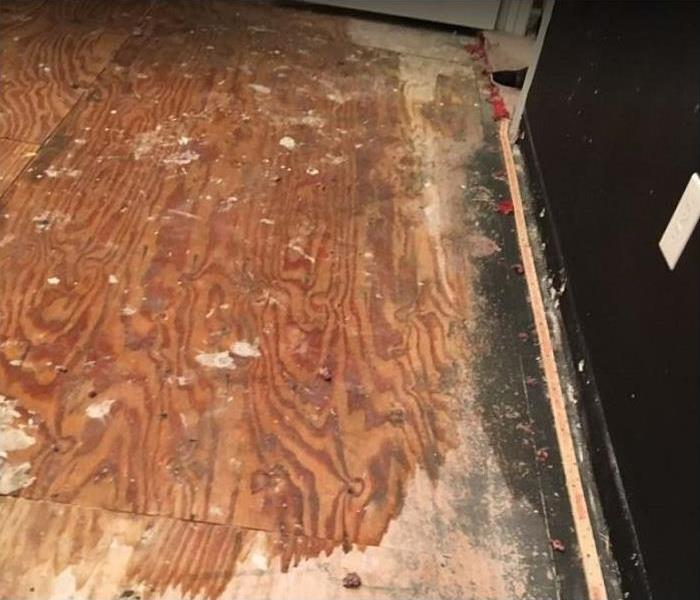 water damaged hardwood and mold growth