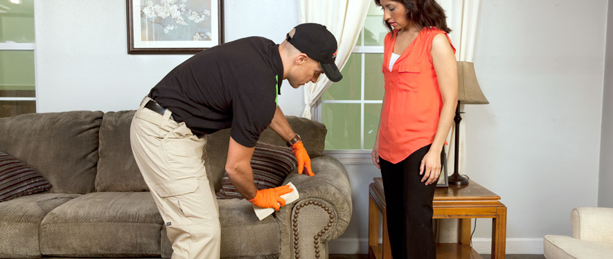 New Orleans, LA carpet upholstery cleaning